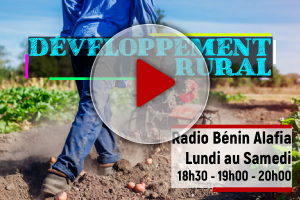 DEVELOPPEMENT RURAL